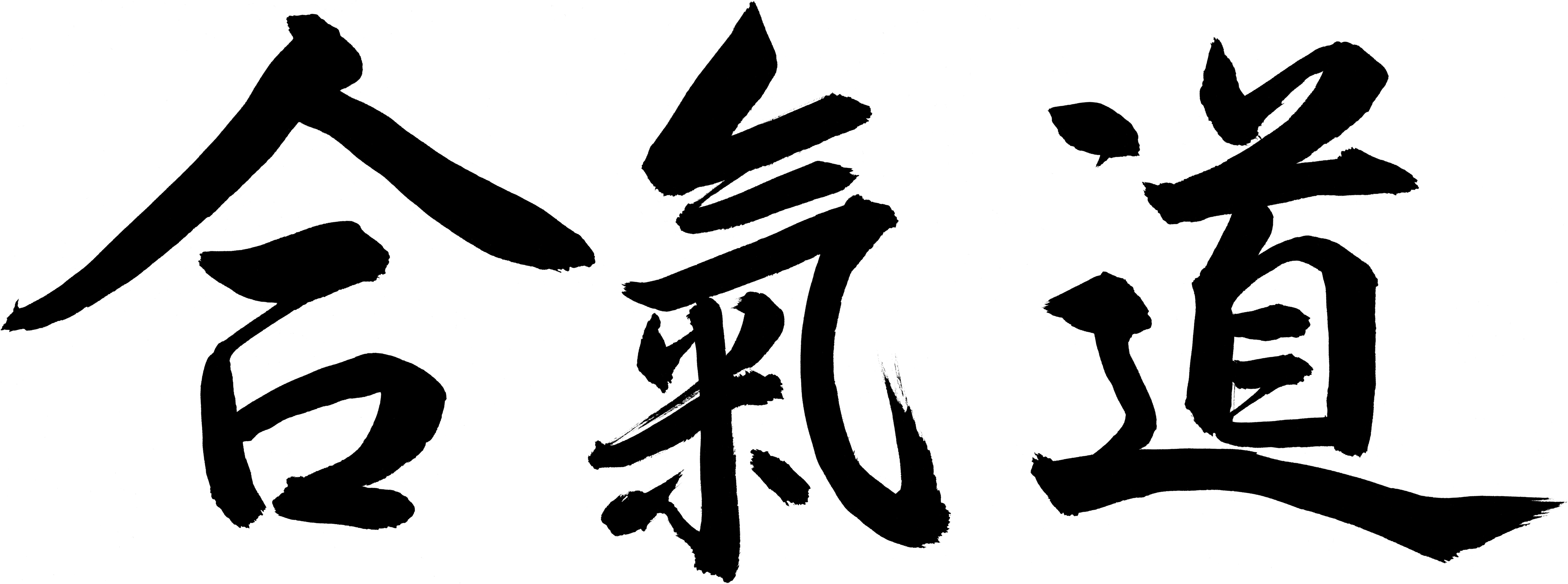 Header_Aikido_Logo